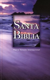 NVI Bible, Hardcover, Beach Scene