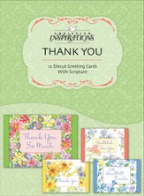 Much Thanks, Thank You Cards, Box of 12