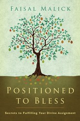 Positioned to Bless: Secrets to Fulfilling Your Divine Assignment - eBook