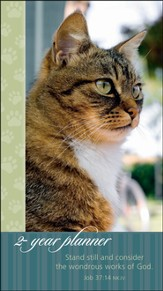 2014-2015 Tabby Cat, Stand Still and Consider, Pocket Planner