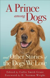 Prince among Dogs, A: and Other Stories of the Dogs We Love - eBook