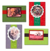 Cuddly Christmas Cards, Box of 12