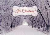 Frosty Landscapes Christmas Cards, Box of 12 - Slightly Imperfect