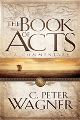 The Book of Acts: A Commentary - eBook
