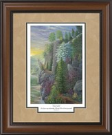 Shadows of Spring Framed Print
