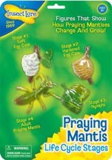 Praying Mantis Life Cycle Stages Figurines