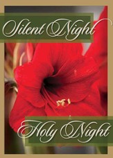 Silent Night, Holy Night, Box of 12 Christmas Cards (KJV)