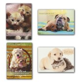Forever Friends, Friendship Cards, Box of 12 (KJV)