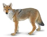 Wild Safari Coyote