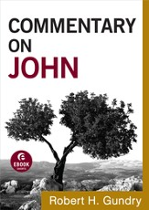 Commentary on John - eBook
