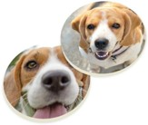 Beagles Car Coasters, Set of 2