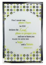 Jeremiah 29:11 Mirror Plaque