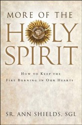 More of the Holy Spirit: How to Keep the Fire Burning in Our Hearts