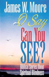 O Say Can You See: Biblical Stories About Spiritual Blindness - eBook