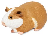 Incredible Creatures, Guinea Pig