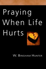 Praying When Life Hurts - PDF Download [Download]