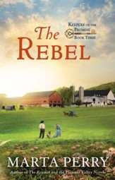 #3: The Rebel