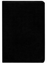 KJV Life in the Spirit Study Bible, Top Grain Leather, Black (Previously titled The Full Life Study Bible) - Slightly Imperfect