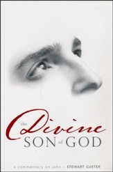 Divine Son of God: A Commentary on John