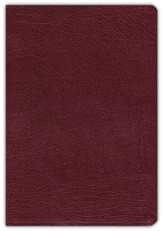 NIV Revised Quest Study Bible Bonded Leather, Burgundy 1984