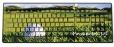 Golf, Proverbs 3:5 USB Wireless Keyboard