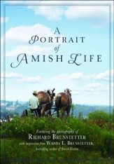 Portrait of Amish Life