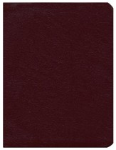 KJV Dake Annotated Reference Bible Bonded Leather Burgundy (larger notes)