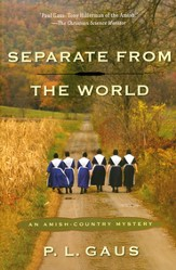 Separate from the World: An Amish Country Mystery   Series