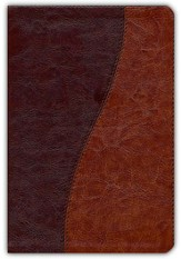 KJV Life Application Study Bible - Personal Size TuTone brown/tan