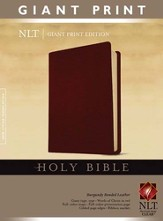 Holy Bible, Giant Print NLT, Bonded Burgundy Leather