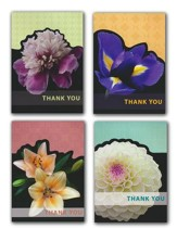 New Joys, Thank You Cards, Box of 12