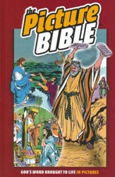 The Picture Bible, Hardcover
