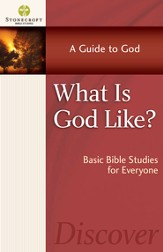 What Is God Like? - eBook