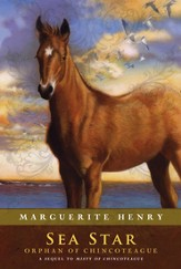 Sea Star: Orphan of Chincoteague - eBook