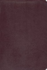 NIV Life Application Study Bible, Revised, Top Grain leather, burgundy 1984