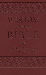 Wisdom from the Bible: 365 Daily Devotions from the Proverbs - eBook