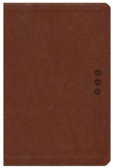 The NLT Wayfinding Bible, Brown/Tan LeatherLike