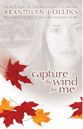 Capture the Wind for Me - eBook