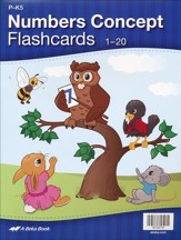 Number Concept Flashcards (set of 20)
