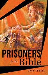 Prisoners in the Bible - eBook