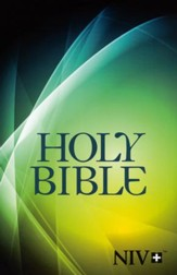 NIV Larger-Print Bible--softcover, graphic