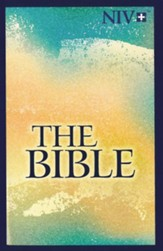 Softcover NIV Bibles