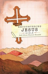 NIV Encountering Jesus Bible: Jesus Revealed Throughout the Bible / Special edition - eBook
