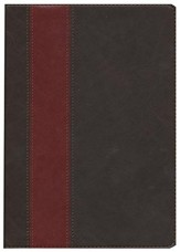 HCSB Life Application Study Bible TuTone leatherlike brown/tan indexed