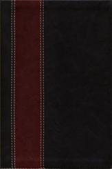 KJV Life Application Study Bible, Personal Size, Brown/Tan Leatherlike