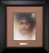 Forgiven, By His Stripes We are Healed Framed Print