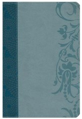 HCSB Study Bible for Women, Teal and Aqua LeatherTouch