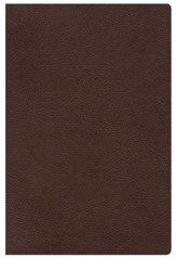 HCSB The Study Bible for Women, Chocolate Genuine Leather Thumb-Indexed