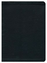 HCSB Study Bible, Black Genuine Leather, Thumb-Indexed  - Slightly Imperfect
