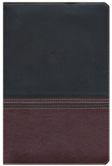 NIV Rainbow Study Bible, Brown and Chestnut LeatherTouch